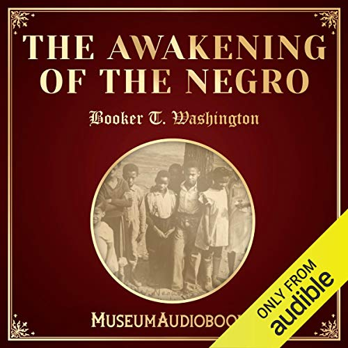 The Awakening of the Negro  By  cover art
