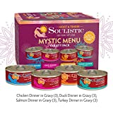 Soulistic Moist & Tender Mystic Menu Variety Pack Wet Cat Food, 5.5 oz, Count of 12