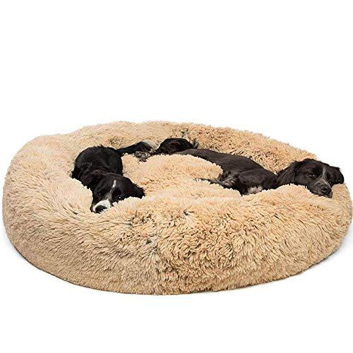 Deluxe Rundes Hundebett für Katzen und Hunde, Ultra Weicher Plüsch luxuriöse waschbar,Haustierbett mit Kissen ideal für Klein/mittelgroße/Großer Hund-M(66 * 66 * 18CM)