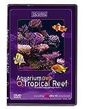 Aquarium DVD   TROPISCHES RIFF mit 4K ULTRA HD Download mit Natürlichen Geräuschen und Entspannender Musik