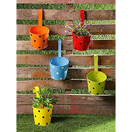 Black Dotted Galvanised Metal Mug Flower/Plants Pot for Hanging Railing in Balcony Planters Garden Home Decor (Pack of 7) Multicolor with Hooks
