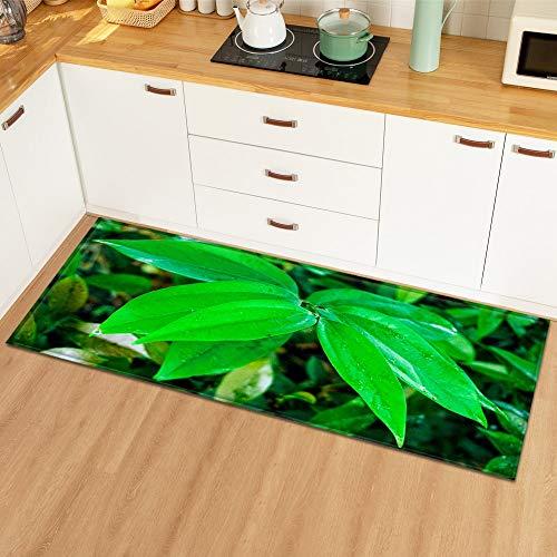 HLXX Eingang Fußmatte Küche Teppich Schlafzimmer Dekoration Bodenteppich Pflanzenmuster Flur Kinderzimmer rutschfeste Badezimmermatte A16 40x60cm