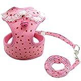 YXDZ Pet Puppy Dog Cat Arnés Leash Set con Bell Bell Cute Lace Chaleco para Mascotas para Perros pequeños y medianos Chihuahua Yorkie Teddy SML XL