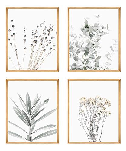Botanical Plant Wall Art Prints- Sets Of 4 (8x10 '') Unframed Wall Decor- Pictures Minimalist Wall Art Photo - Nordic Style Eucalyptus And Lavander Leaf Prints-Modern Art Boho Print Decor - Farmhouse, Kitchen, Bedroom Wall Decor