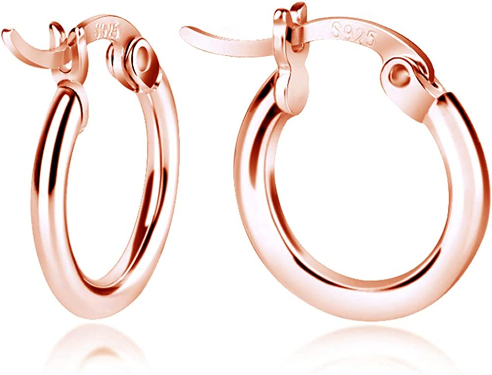 Sterling It is very popular Same day shipping Silver Hoop Earrings Small Clasp Gold in