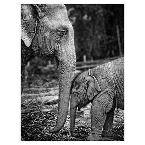 SODIAL DIY Diamante Pintura Elefante Diamante Bordado Animal Diamante Punto de Cruz Estilo Americano DecoracióN del Hogar Diamante Arte