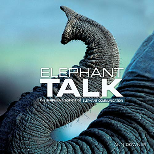 Elephant Talk Audiobook By Ann Downer cover art