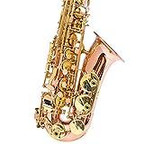 Saxophone Saxophone Sax with Professional EB E Flat Alto Case,Lubricant,Case,Strap,Mouthpiece,etc Portable Handheld (Color : Gold, Size : Medium)