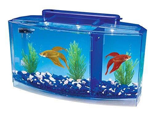 of penn plax aquariums dec 2021 theres one clear winner Penn Plax Deluxe Triple Betta Bow Aquarium Tank, 0.7-Gallon