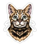 JS Artworks Bengal Spotted Striped Head Vinyl Bumper Sticker Decal Cat Family Pet Love