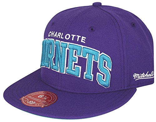 Mitchell & Ness NBA Charlotte Hornets 2 Tone Arch Fitted Cap (6 7/8)
