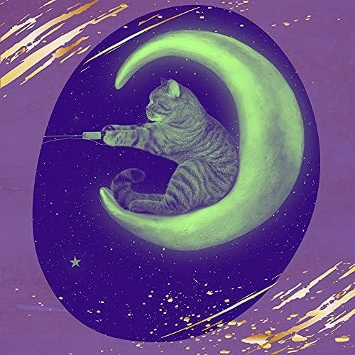 すごい 猫の音楽