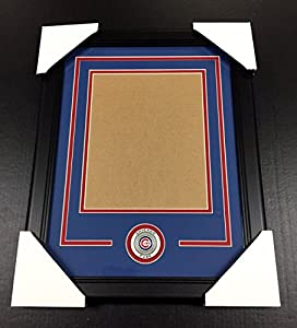 CHICAGO CUBS Medallion Frame Kit 8x10 Photo Double Mat VERTICAL