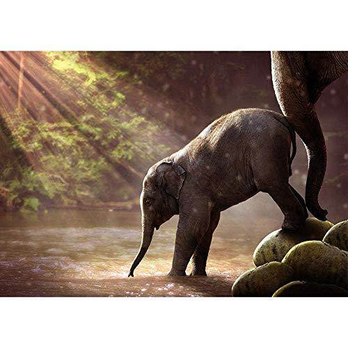 YISANWU Pintar por número Juegos Juegos DIY Pinceles Adultos niños Pinturas Decoraciones al óleo Animal,Bebé Elefante Junto al río,40x50cm Pared decoración Picture Pintar Kit