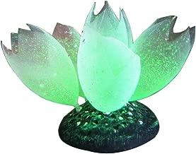 MJuan-clothing,Aquarium Artificial Grass Aquarium Accessories, Silicone Glow Artificial Fish Tank Aquarium Coral Bubble Plant Ornament Decor - Green