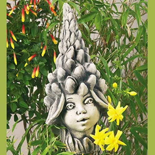 Blumenkind Lupine