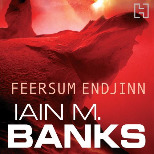 Feersum Endjinn audiobook cover art