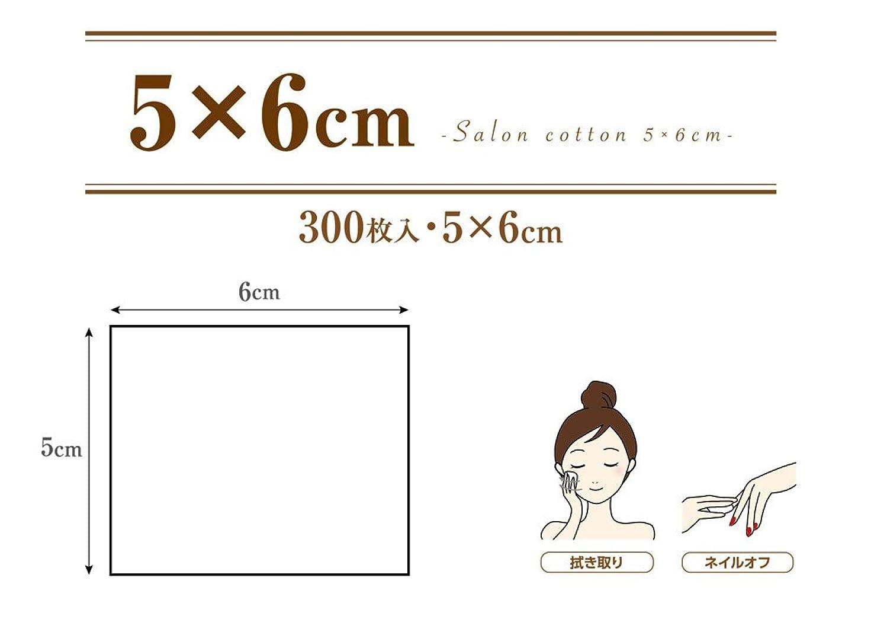 非武装化困難動機業務用 コットンパフ (5×6cm 300枚入 箱入り) サロンコットン 5×6
