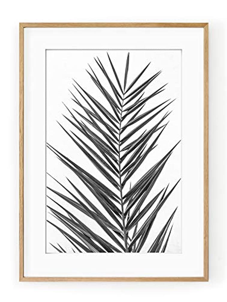Black and White Palm Tree Leaf, Natural Solid Oak Frame, with Mount, Multicolored, 50x70