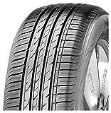 Nexen N'blue HD Plus - 175/65R14 - Neumáticos de verano