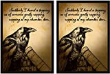 100 Legion Supplies Raven Deck Protector Sleeves