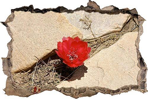 Calcomanía de Pared 3D Maravillosa flor de cactus rojo Agujero Etiqueta de La Pared Adhesivos de Pared para Interior Hogar Sala de Estar Decoración de Oficina 70x110cm