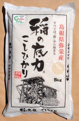 稲の底力 こしひかり 5kg×2(合計10Kg) 島根県産 お米
