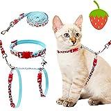 Handmade Cat Harnesses