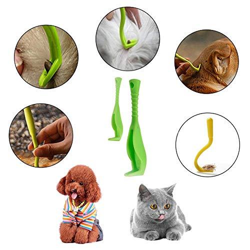 Compresse antipulci per gatti