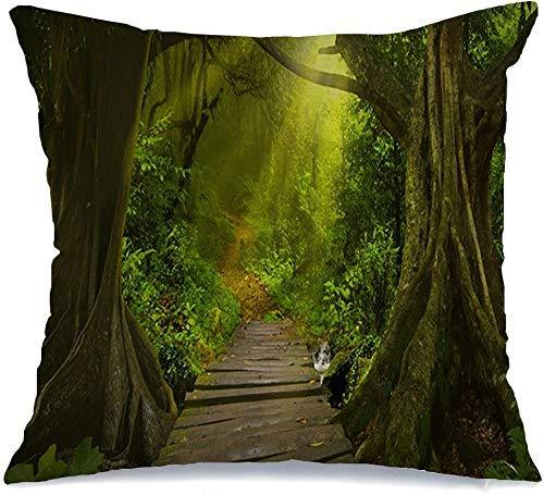 Funda de Cojine Throw CojínNiebla Clima Mañana Abeto Selva asiática Naturaleza Prístina Parques Diseño al aire libre Palmera Musgo Madera de bambú Fundas para almohada 45X45CM