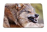 26cmx21cm マウスパッド (オオカミの顔の歯の侵略の捕食者) パターンカスタムの マウスパッド