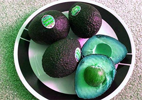 American Bonsai Fruit van de avocado Delicious Delicious Persea Mill Pear Bonsai gemakkelijk te kweken Fruit Bonsai Home Garden Plant 10st: 4