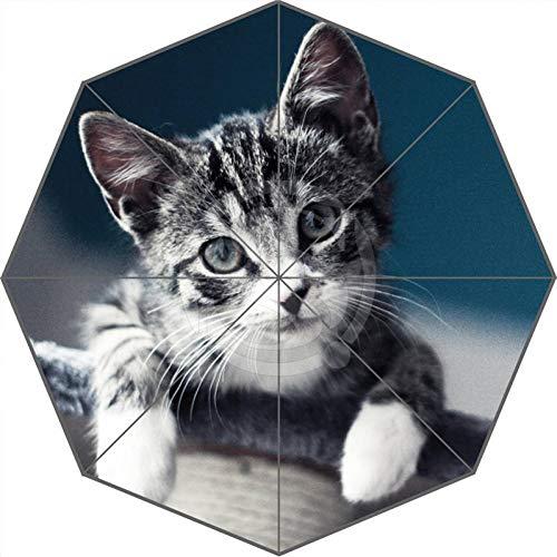 PJFGNMJJK Regenschirm Gemalt Sonnige Katze Sonniger Regen Sonnenschutz Uv-Regenschirm