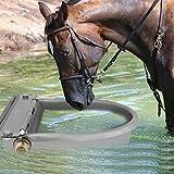 Ganado bebedero automático, 4Litro acero inoxidable cuenco al agua beber...