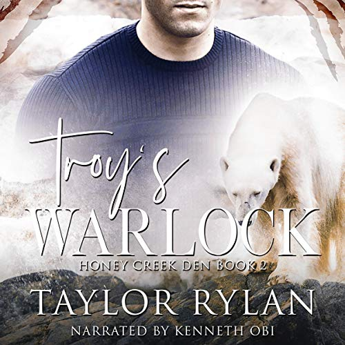 Troy's Warlock audiobook cover art