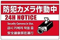 表示看板 「防犯カメラ作動中」 赤地 英語/中国語/韓国語入り 反射加工あり 特大サイズ 90cm×135cm VH-198XLRF