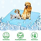 Best Cooling Pad For Dogs - Summer Cooling Mat for Dogs Cats Self Dog Review
