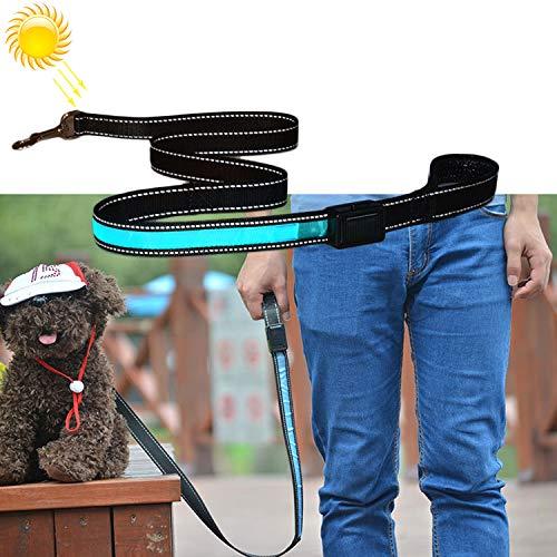 Pet lijn 1,2 m Medium en Large Dog Pet Solar + USB-oplader LED-licht (oranje) Komt veilig en mooi blauw