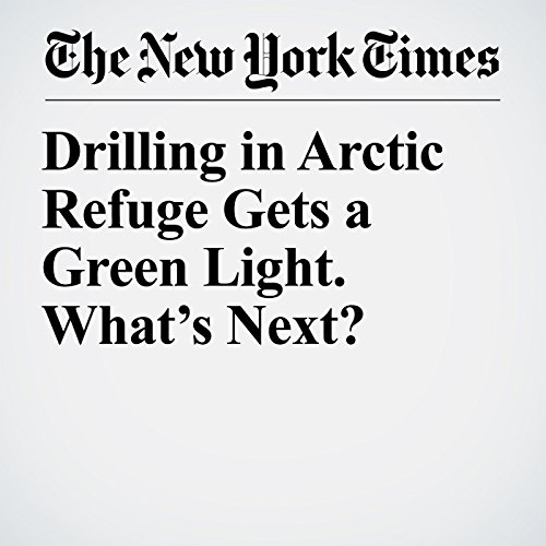 Drilling in Arctic Refuge Gets a Green Light. What's Next? copertina