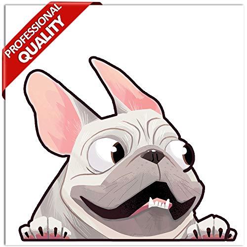 Biomar Labs® 1 x Vinyl Aufkleber Autoaufkleber Sticker Dog Hund Französische Bulldogge French Bulldog B 226