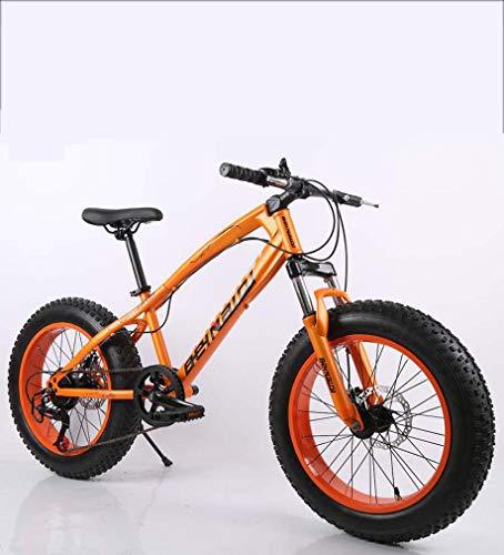 AISHFP Fat Tire Mens Mountain Bike, Doppio Freno a Disco in Acciaio /-Alto tenore di Carbonio Telaio...