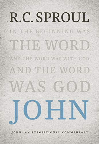 Image of John: An Expositional Commentary