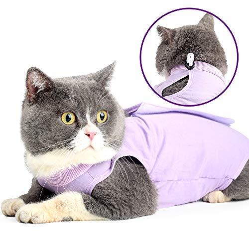Cat Professionnel Restauration Convient pour abdominaux...