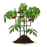 Supporto per fiori per piante rampicanti, traliccio per piante in vaso, supporto per piante in vaso, supporto in plastica, mini pianta da giardino sovrapposta, 30,5 x 16,5 x 0,4 cm (8 pezzi)