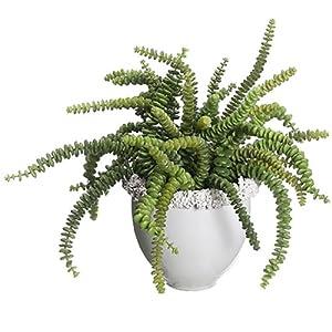 SilksAreForever 15″ Hx16 W Succulent Artificial Plant w/Ceramic Vase -Green