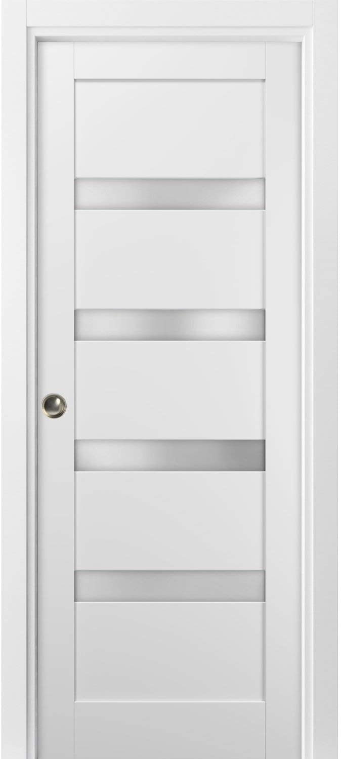 Panel Lite Pocket Door 24 Colorado Springs Mall x Fort Worth Mall 80 4113 White Frames S Quadro with