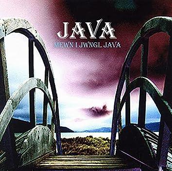 Mewn I Jwngwl Java