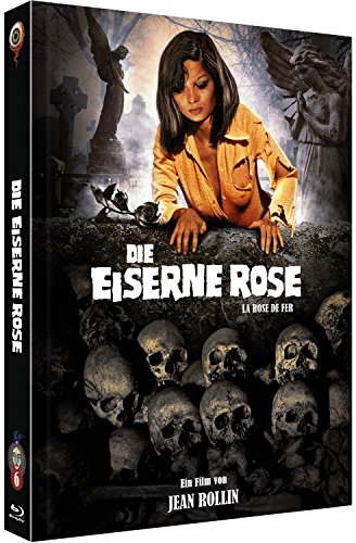 Die Eiserne Rose - Iron Rose [Blu-Ray+DVD] - uncut - auf 666 limitiertes Mediabook Cover A