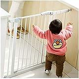 LNDDP Cancello per Bambini con Porta per Cani Scala per Bambini Resistente agli Urti Ringhiera di Protezione Recinzione per Bambini Porta d'isolamento Doppia Chiusura a Chiusura Automatica