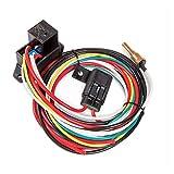 Flex-a-lite Electric Fan Controller w/Relay Screw-in Probe